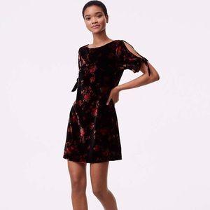 LOFT Floral Velvet Split Sleeve Dress